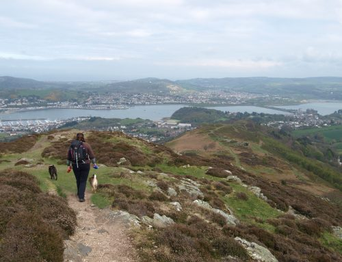 The ascent of Conwy mountain