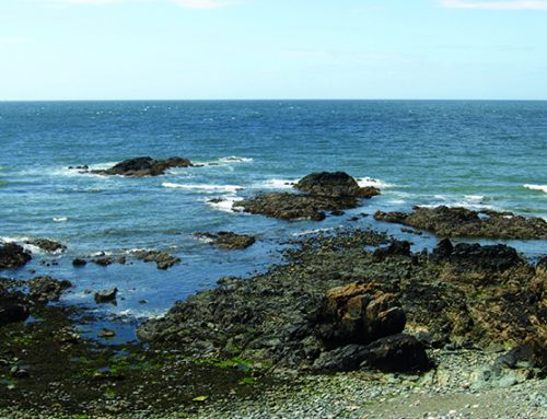 A Church Bay Circular