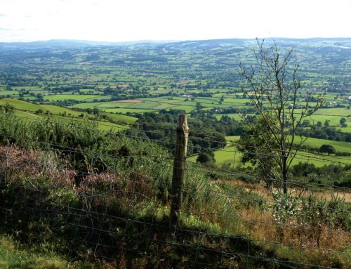 Exploring Penycloddiau hill fort